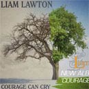 Liam Lawton - courage can cry